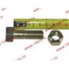 Болт M14х45 карданный с гайкой H2/H3 HOWO (ХОВО) Q151C1445 фото 2 Астрахань
