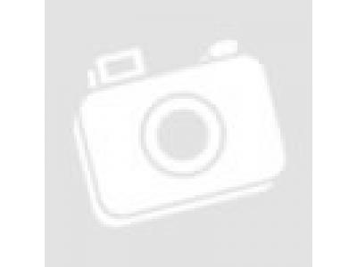 Глушитель H HOWO (ХОВО) WG9725540060 фото 1 Астрахань